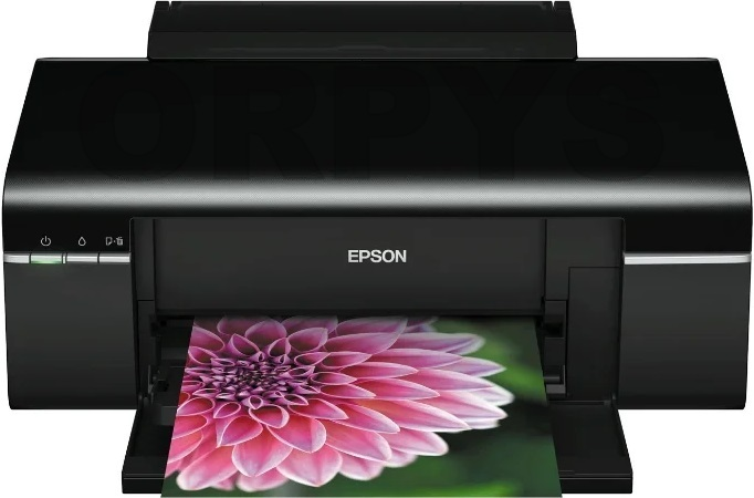 Epson Stylus Photo T50, T60, P50 driver download